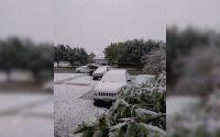 nieve en Coahuila