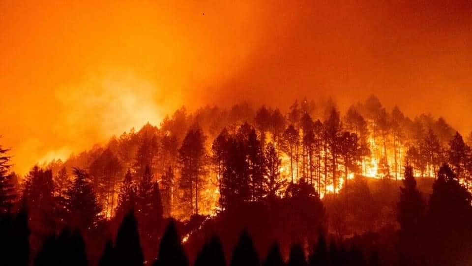 incendio en sierra madre